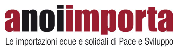Logo Anoimporta Medio