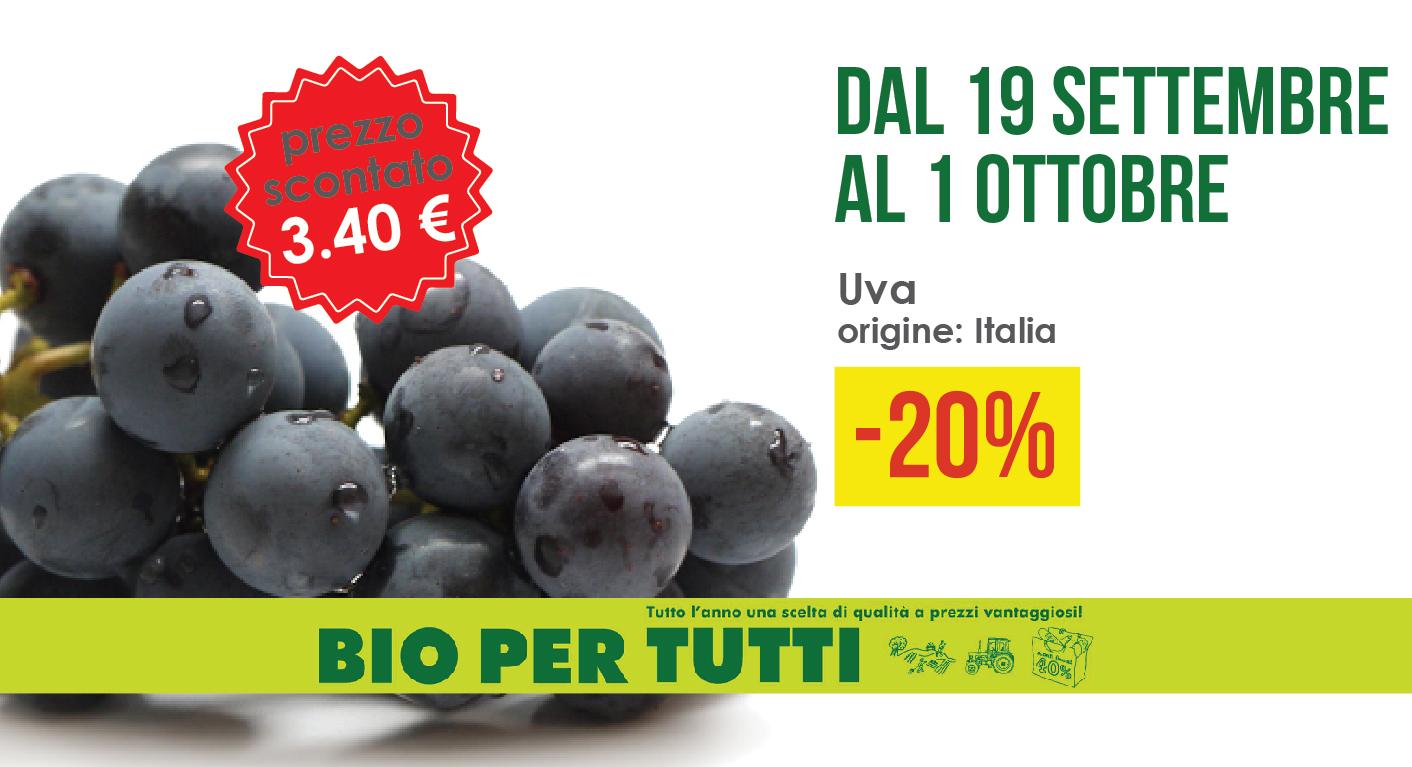 Offerte Bio Per Tutti Dal 19 Settembre Al 1 Ottobre: Uva