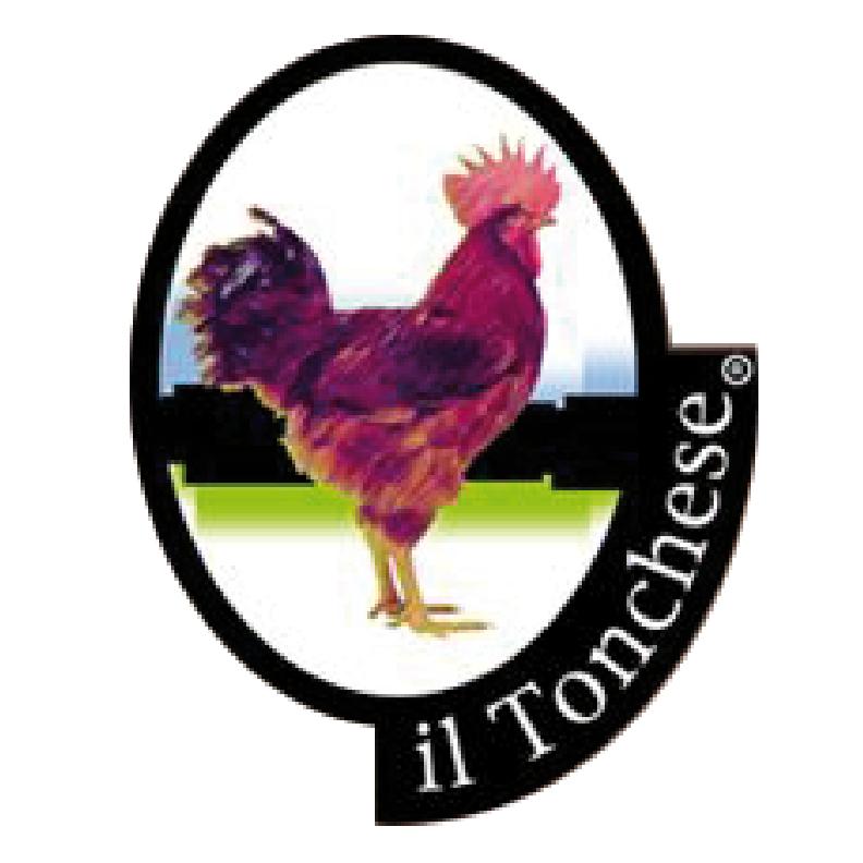 Il Tonchese