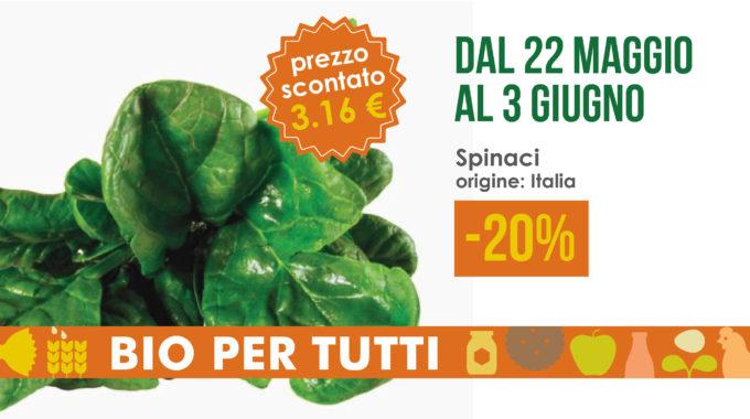 Offerte Bio Per Tutti Dal 22 Maggio Al 3 Giugno: Spinaci