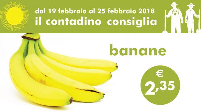 Il Contadino Consiglia: Banane