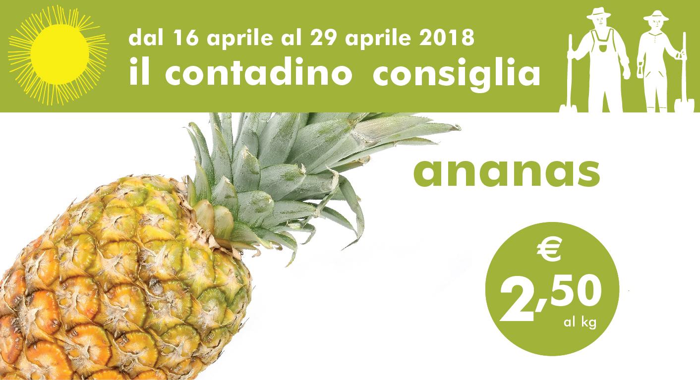 Il Contadino Consiglia: Ananas