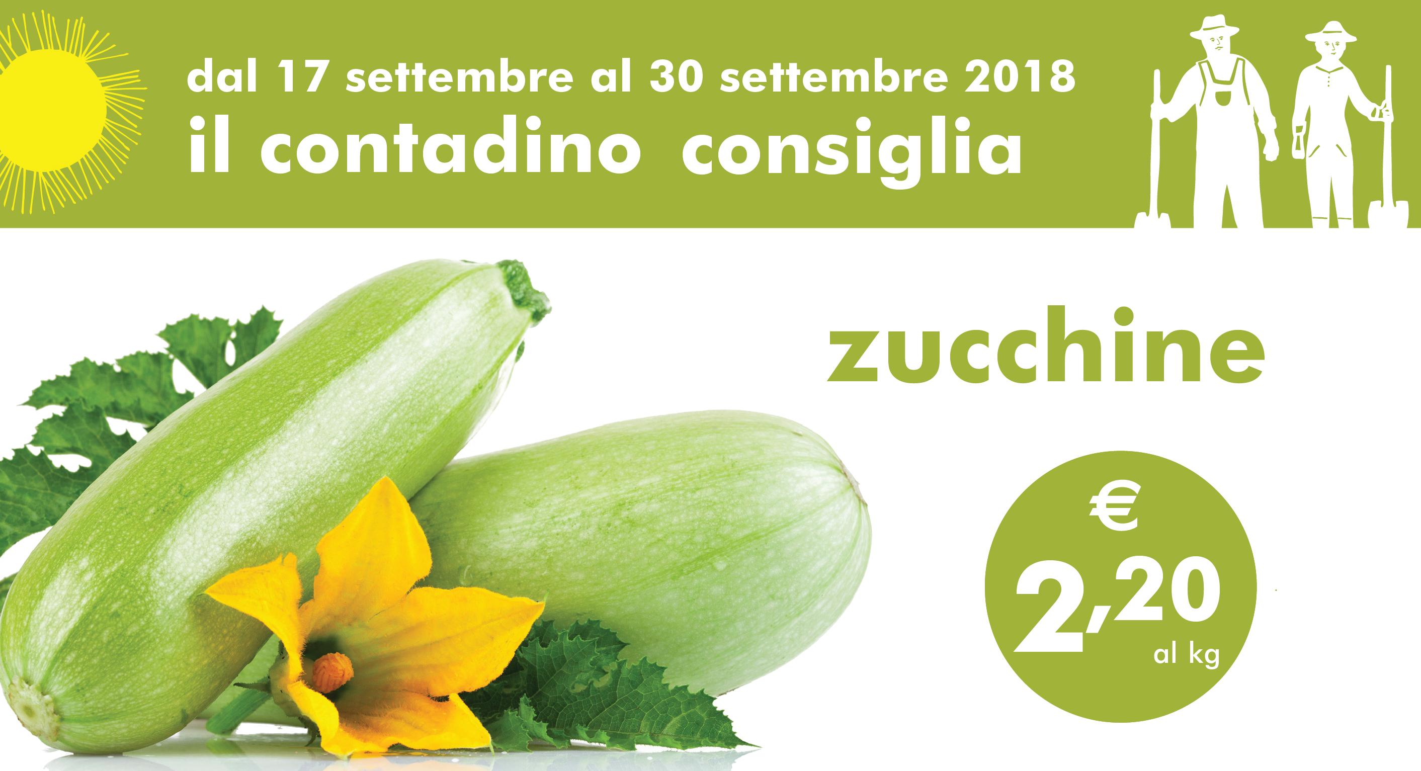 Promozione Ortofrutta: Zucchine