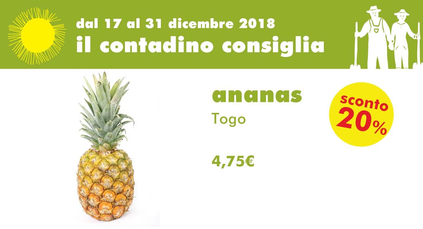 Promozione Ortofrutta: Ananas