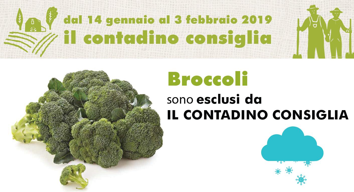 Promozione Ortofrutta: Broccoli