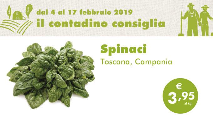 Promozione Ortofrutta: Spinaci
