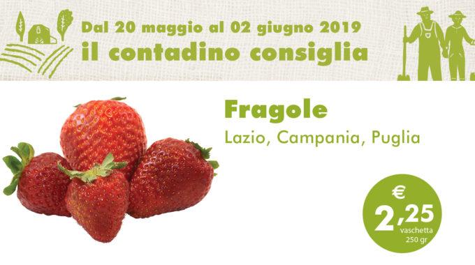 Ortofrutta Maggio2 01
