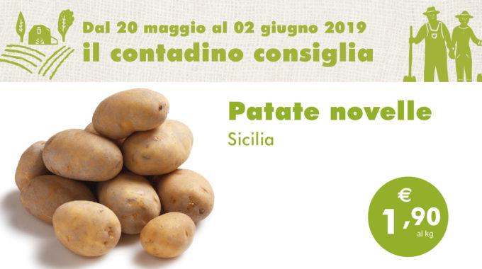 Ortofrutta Maggio2 04
