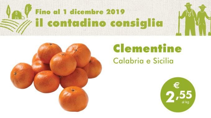 Promozione Ortofrutta: Clementine