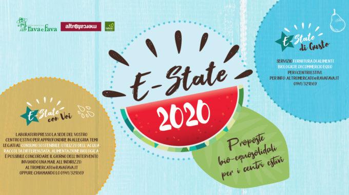 E-state 2020