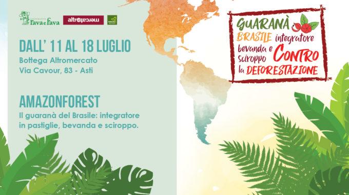 AmazonForest